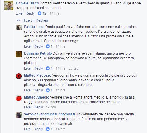 muratella avcpp diaco montanari - 2