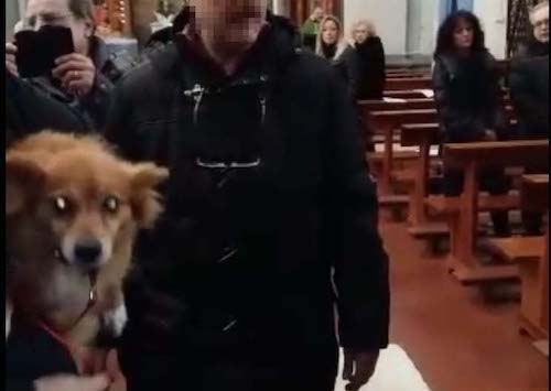 genzano cani chiesa