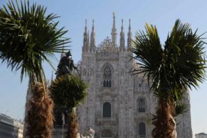 piazza duomo palme clandestini milano - 10