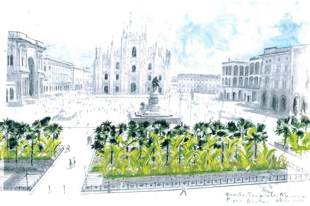 piazza duomo palme clandestini milano - 11