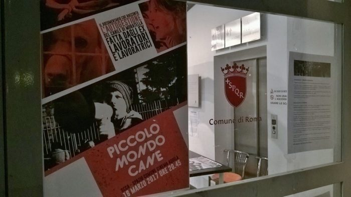 nuovo cinema aquila censura roma
