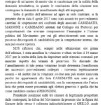 ordinanza cassimatis 3