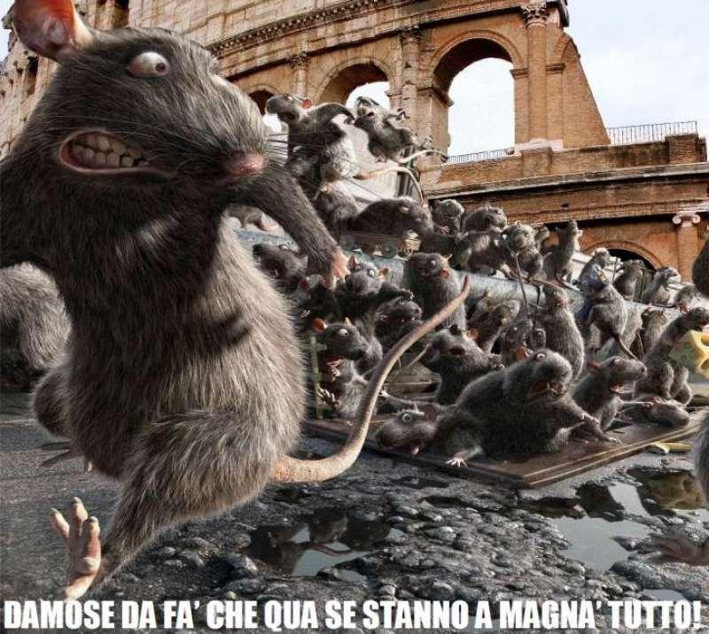 pinuccia montanari topi roma