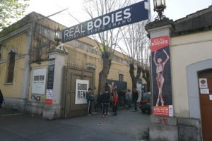 real bodies roma 1