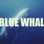 blue whale iene suicidio gioco russia - 4