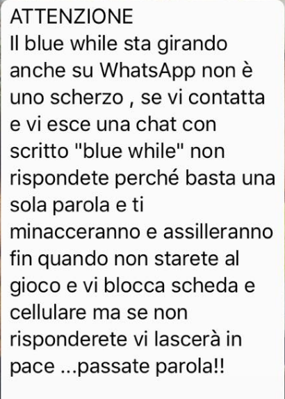 blue whale whatsapp - 1