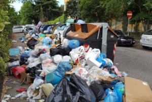 grillo raggi emergenza rifiuti roma - 7