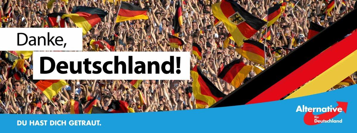 afd germania elezioni