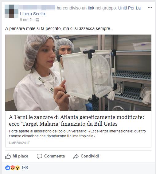 bambina trento malaria vaccini zanzare - 1