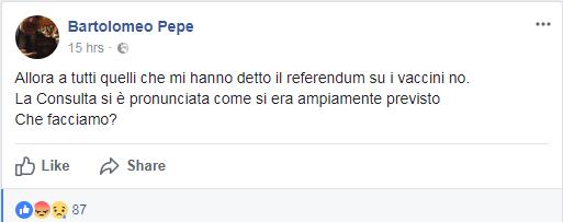 bartolomeo pepe free vax referendum corte costituzionale - 2