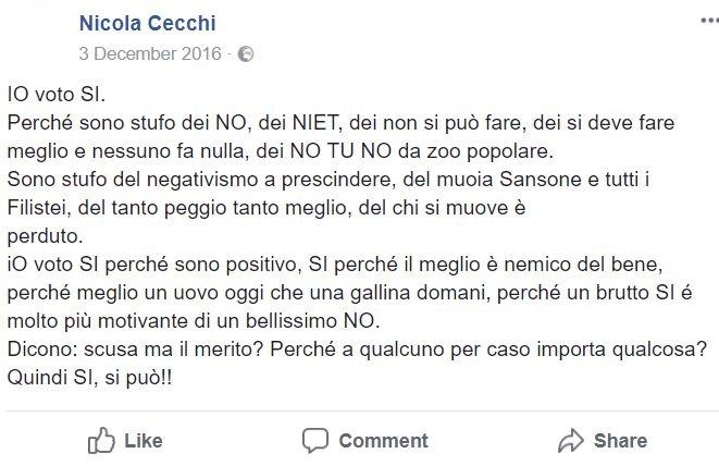 nicola cecchi m5s