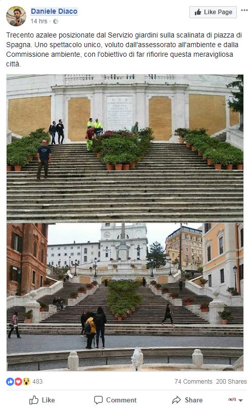 daniele diaco azalee scalinata piazza di spagna - 1